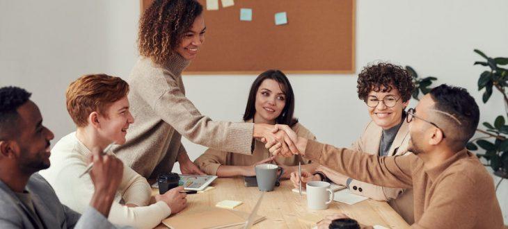 licence pro management des organisations