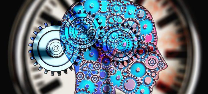 que faire avec une licence de psychologie
